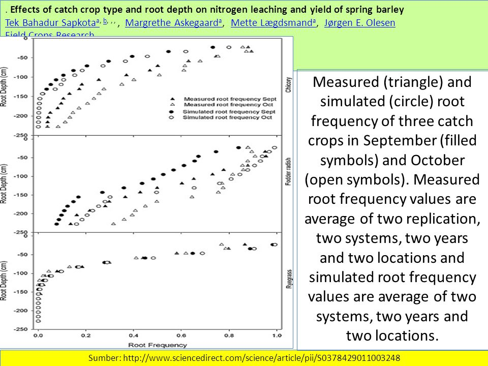 Effects of catch crop type and root depth on nitrogen leaching and yield of spring barley Tek Bahadur Sapkota aTek Bahadur Sapkota a, b,,,, Margrethe Askegaard a, Mette Lægdsmand a, Jørgen E.