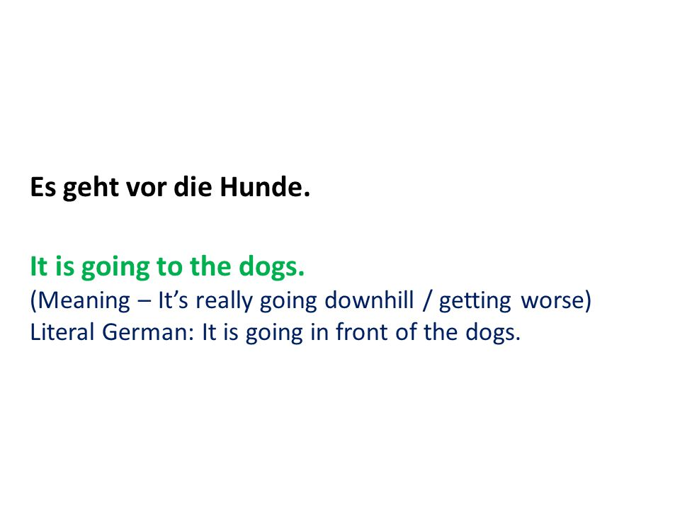 Es geht vor die Hunde. It is going to the dogs. (Meaning – It's really going downhill / getting worse) Literal German: It is going in front of the dog