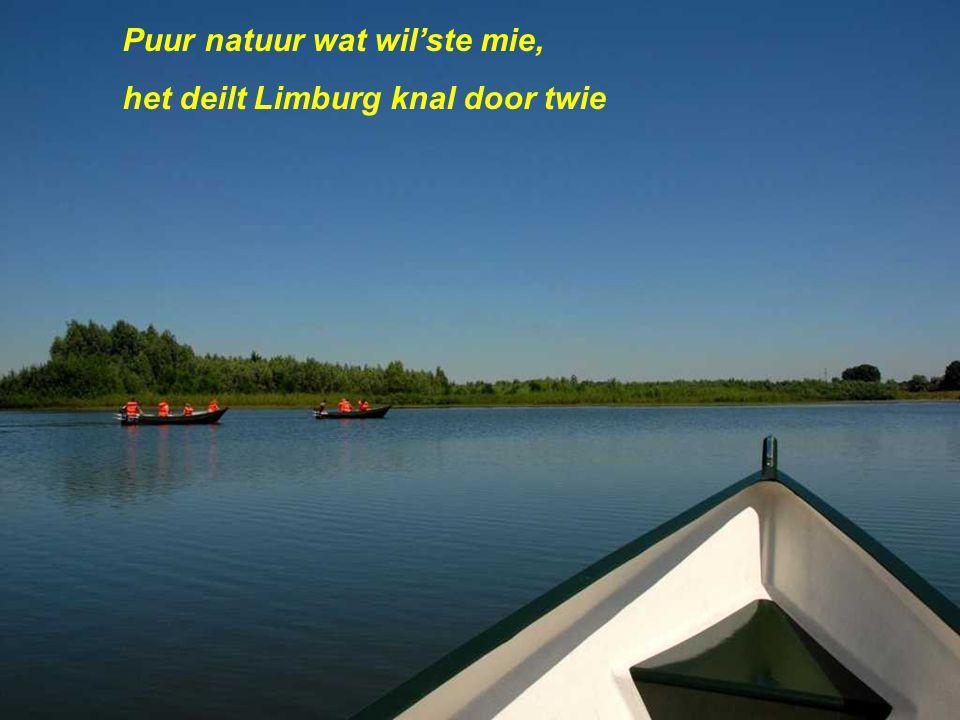 Ôs Limburgs Maaslaand