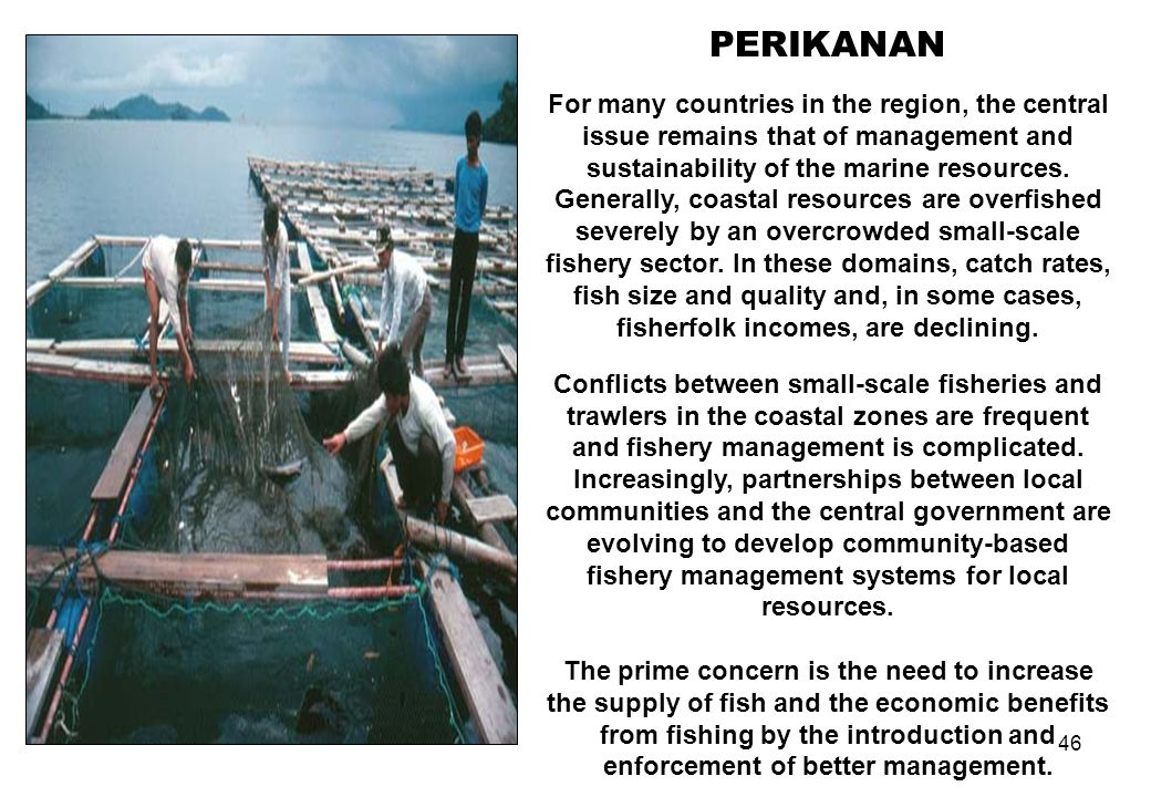 46 PERIKANAN For many countries in the region, the central issue remains that of management and sustainability of the marine resources. Generally, coa