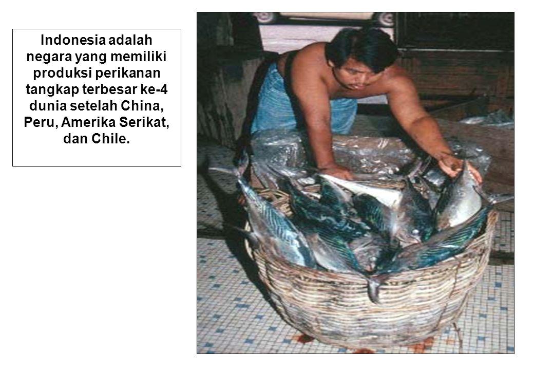 48 Indonesia adalah negara yang memiliki produksi perikanan tangkap terbesar ke-4 dunia setelah China, Peru, Amerika Serikat, dan Chile.