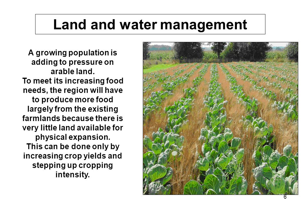 6 A growing population is adding to pressure on arable land. To meet its increasing food needs, the region will have to produce more food largely from