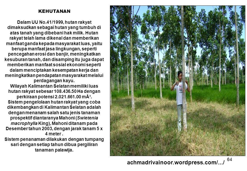 64 KEHUTANAN Dalam UU No.41/1999, hutan rakyat dimaksudkan sebagai hutan yang tumbuh di atas tanah yang dibebani hak milik. Hutan rakyat telah lama di