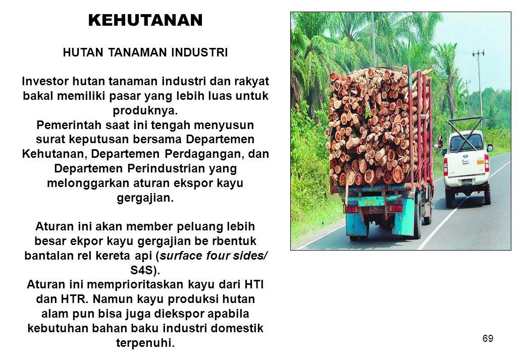 69 KEHUTANAN HUTAN TANAMAN INDUSTRI Investor hutan tanaman industri dan rakyat bakal memiliki pasar yang lebih luas untuk produknya. Pemerintah saat i