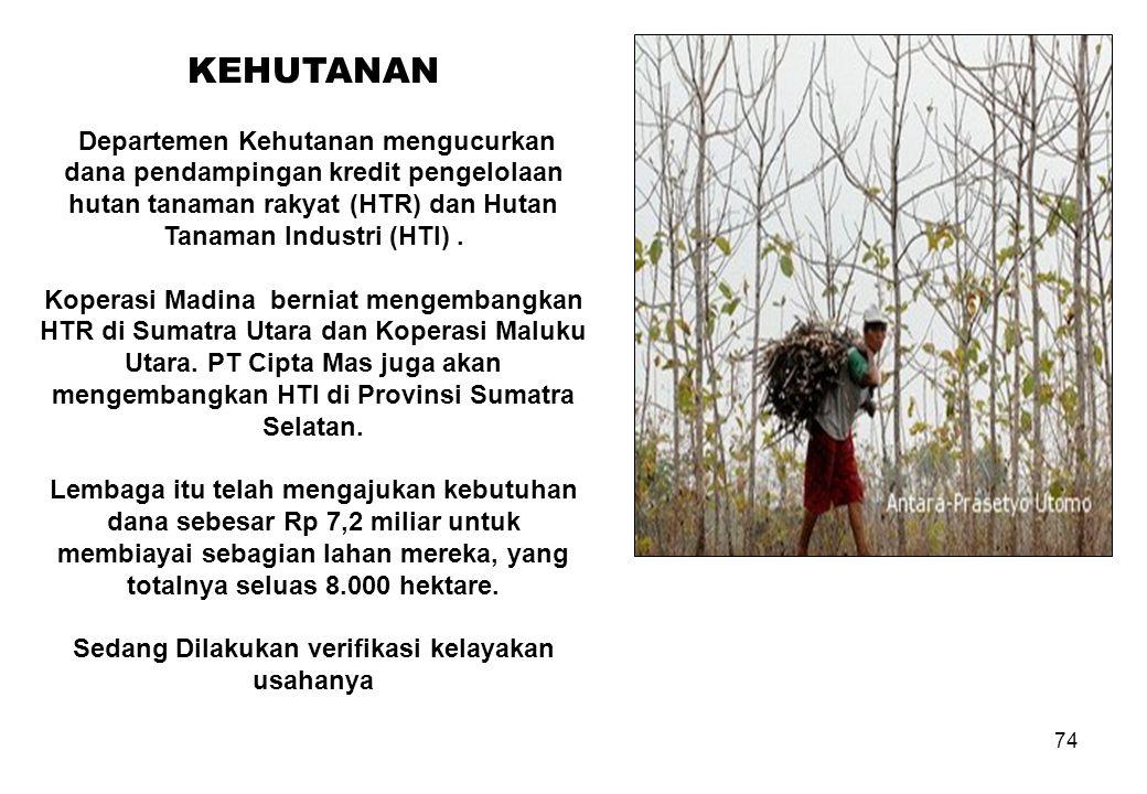 74 KEHUTANAN Departemen Kehutanan mengucurkan dana pendampingan kredit pengelolaan hutan tanaman rakyat (HTR) dan Hutan Tanaman Industri (HTI). Kopera