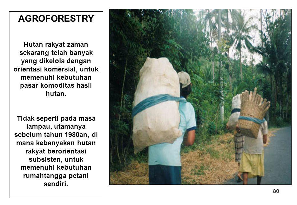 80 AGROFORESTRY Hutan rakyat zaman sekarang telah banyak yang dikelola dengan orientasi komersial, untuk memenuhi kebutuhan pasar komoditas hasil huta