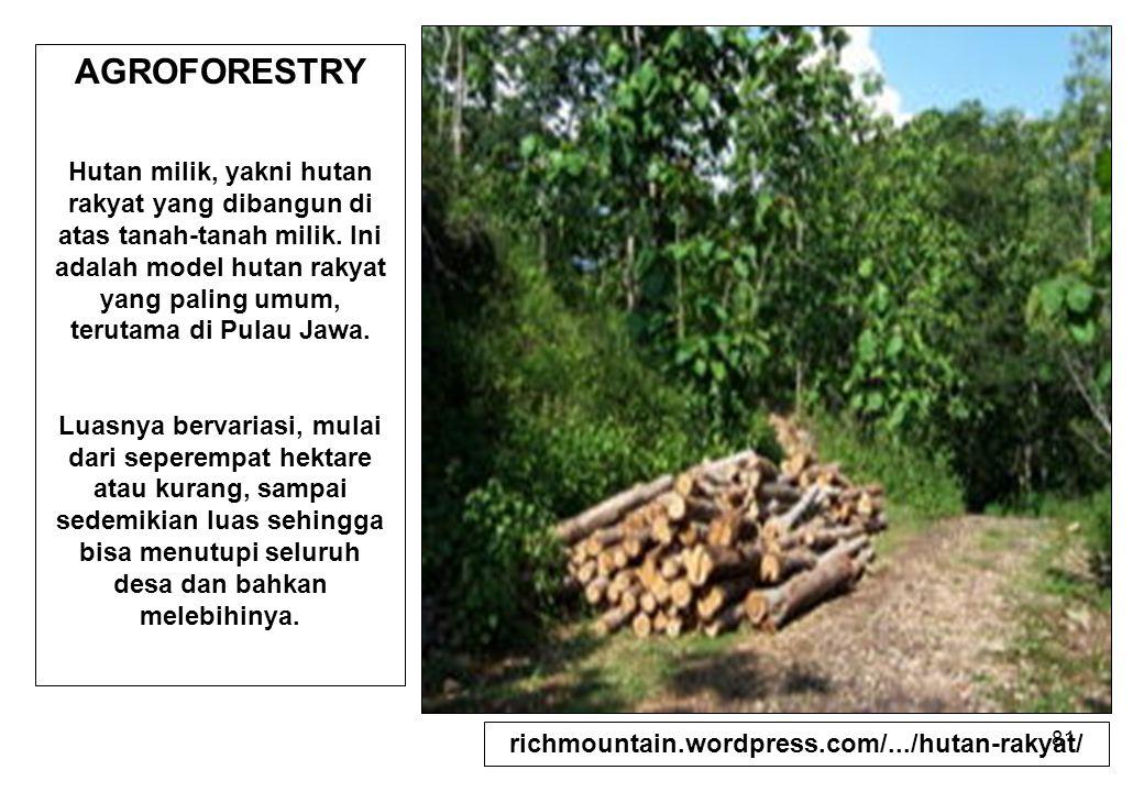 81 AGROFORESTRY Hutan milik, yakni hutan rakyat yang dibangun di atas tanah-tanah milik. Ini adalah model hutan rakyat yang paling umum, terutama di P