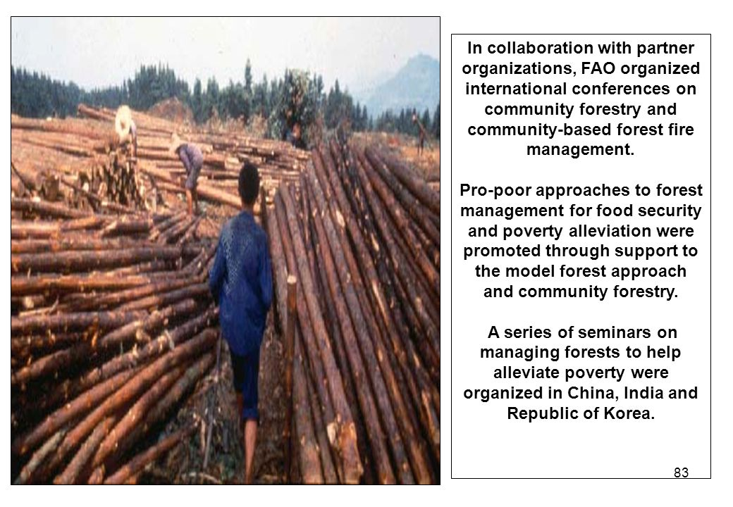 83 In collaboration with partner organizations, FAO organized international conferences on community forestry and community-based forest fire manageme