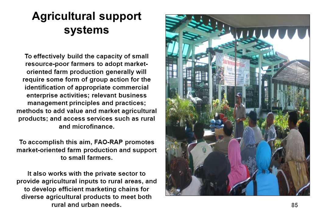 85 Agricultural support systems To effectively build the capacity of small resource-poor farmers to adopt market- oriented farm production generally w