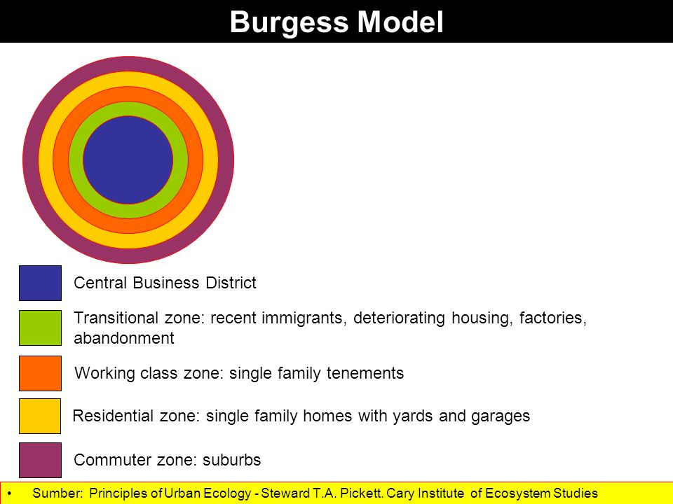 Cities have multiple and changing forms. Sumber: Principles of Urban Ecology - Steward T.A.