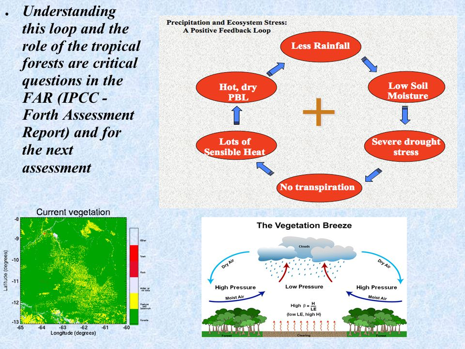 ● Understanding this loop and the role of the tropical forests are critical questions in the FAR (IPCC - Forth Assessment Report) and for the next ass