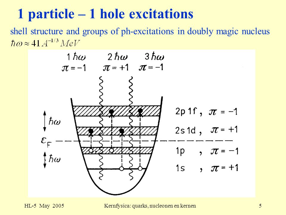 HL-5 May 2005Kernfysica: quarks, nucleonen en kernen5 1 particle – 1 hole excitations shell structure and groups of ph-excitations in doubly magic nucleus