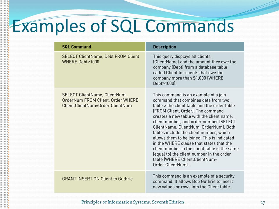 Principles of Information Systems, Seventh Edition17 Examples of SQL Commands