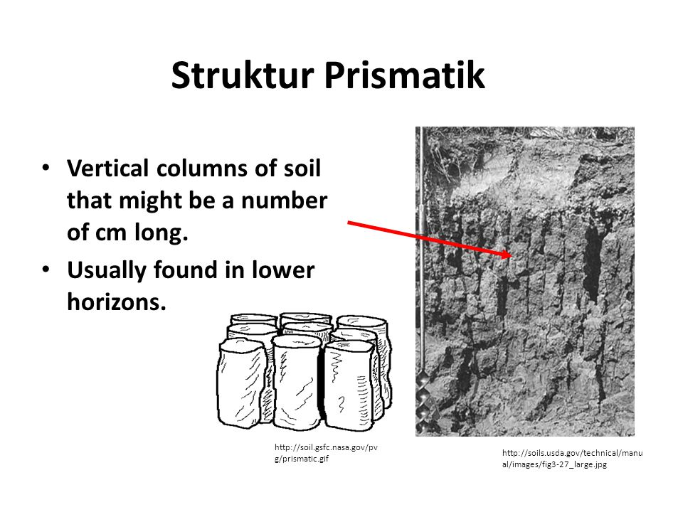 Struktur Prismatik Vertical columns of soil that might be a number of cm long. Usually found in lower horizons. http://soil.gsfc.nasa.gov/pv g/prismat