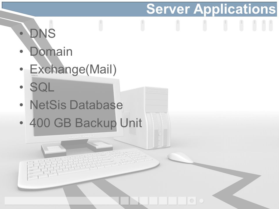 Server Applications DNS Domain Exchange(Mail) SQL NetSis Database 400 GB Backup Unit