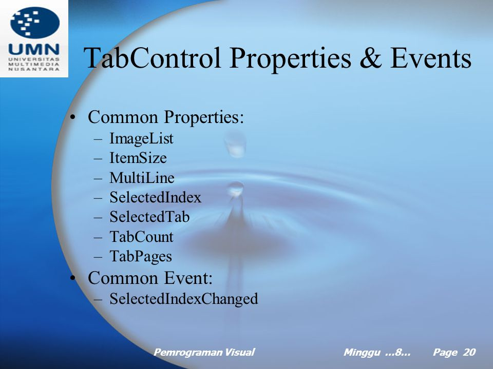 Pemrograman VisualMinggu …8… Page 19 Tab Control