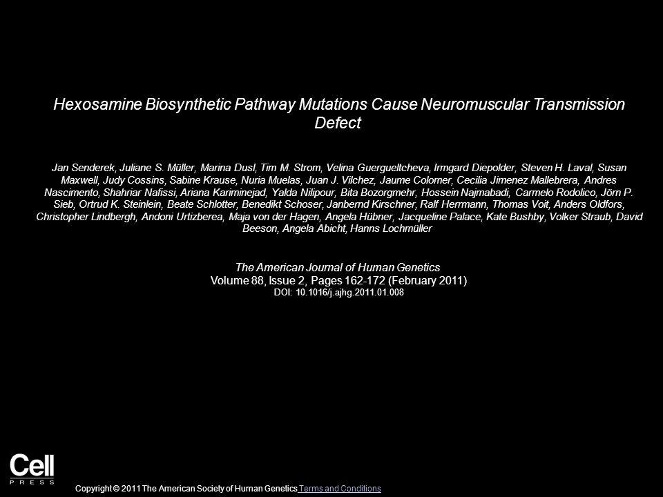 Hexosamine Biosynthetic Pathway Mutations Cause Neuromuscular Transmission Defect Jan Senderek, Juliane S.