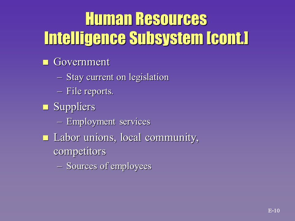Human Resources Intelligence Subsystem [cont.] n Government –Stay current on legislation –File reports.