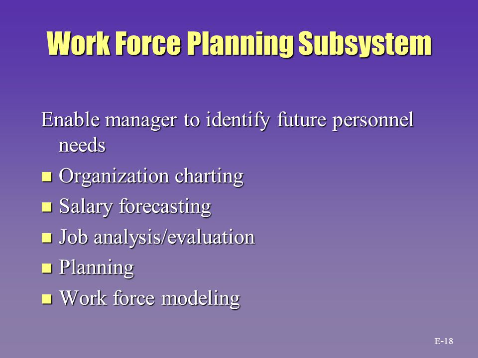 Work Force Planning Subsystem Enable manager to identify future personnel needs n Organization charting n Salary forecasting n Job analysis/evaluation n Planning n Work force modeling E-18
