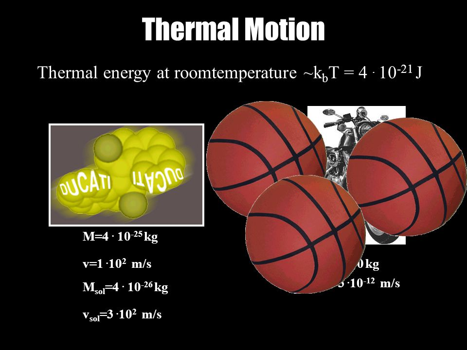 Thermal Motion Thermal energy ~ Thermal energy at roomtemperature ~k b T = 4.