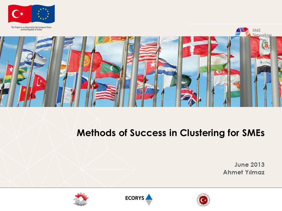 Methods of Success in Clustering for SMEs June 2013 Ahmet Yılmaz
