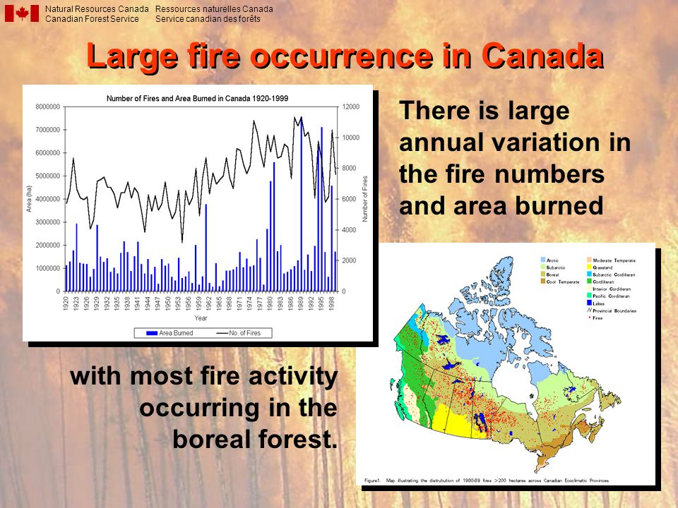 Large fire occurrence in Canada Natural Resources Canada Canadian Forest Service Ressources naturelles Canada Service canadian des forêts with most fire activity occurring in the boreal forest.