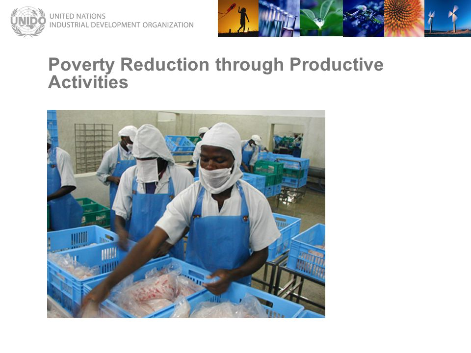 Poverty Reduction through Productive Activities
