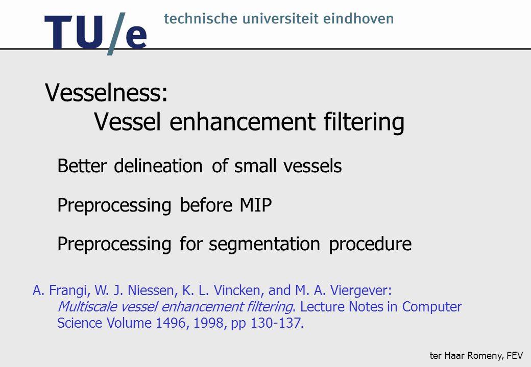 ter Haar Romeny, FEV Vesselness: Vessel enhancement filtering Better delineation of small vessels Preprocessing before MIP Preprocessing for segmentat