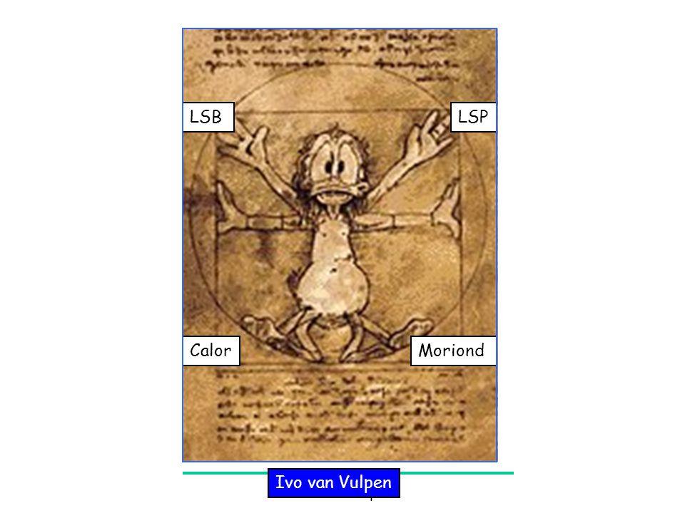 April 2004Ivo van Vulpen 1 MoriondCalor LSPLSB Ivo van Vulpen