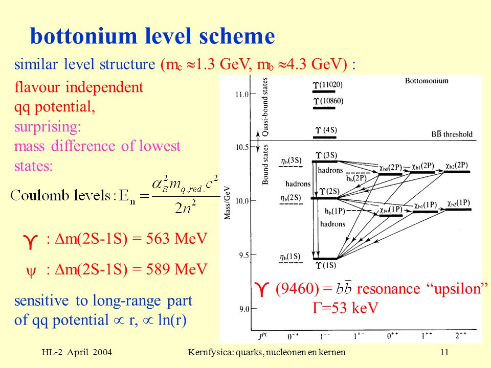HL-2 April 2004Kernfysica: quarks, nucleonen en kernen11 bottonium level scheme flavour independent qq potential, surprising: mass difference of lowest states:  (9460) = resonance upsilon  =53 keV  :  m(2S-1S) = 563 MeV  :  m(2S-1S) = 589 MeV sensitive to long-range part of qq potential  r,  ln(r) similar level structure (m c  1.3 GeV, m b  4.3 GeV) :