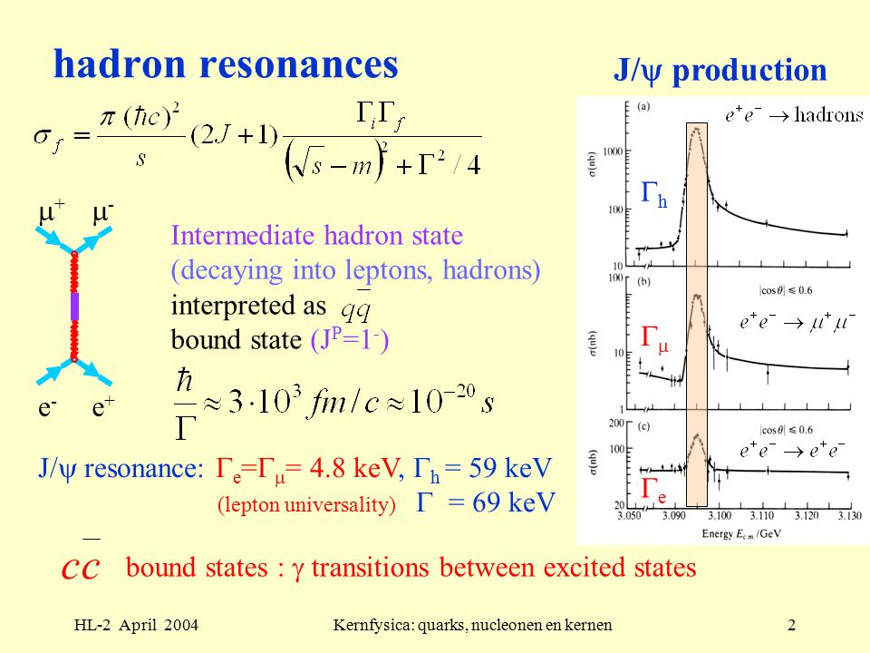 HL-2 April 2004Kernfysica: quarks, nucleonen en kernen2 Intermediate hadron state (decaying into leptons, hadrons) interpreted as bound state (J P =1 - ) hadron resonances J/  production J/  resonance:  e =   = 4.8 keV,  h = 59 keV (lepton universality)  = 69 keV ee  hh ++ -- e-e- e+e+ cc bound states :  transitions between excited states