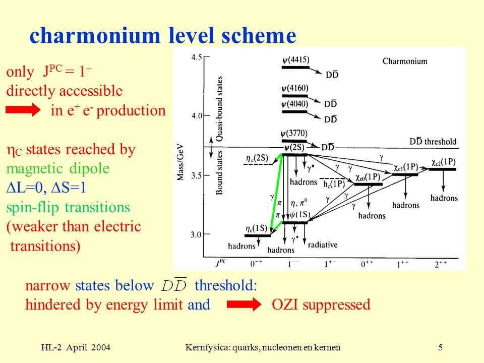 HL-2 April 2004Kernfysica: quarks, nucleonen en kernen5 charmonium level scheme narrow states below threshold: hindered by energy limit and OZI suppressed only J PC = 1 – directly accessible in e + e - production  C states reached by magnetic dipole  L=0,  S=1 spin-flip transitions (weaker than electric transitions)