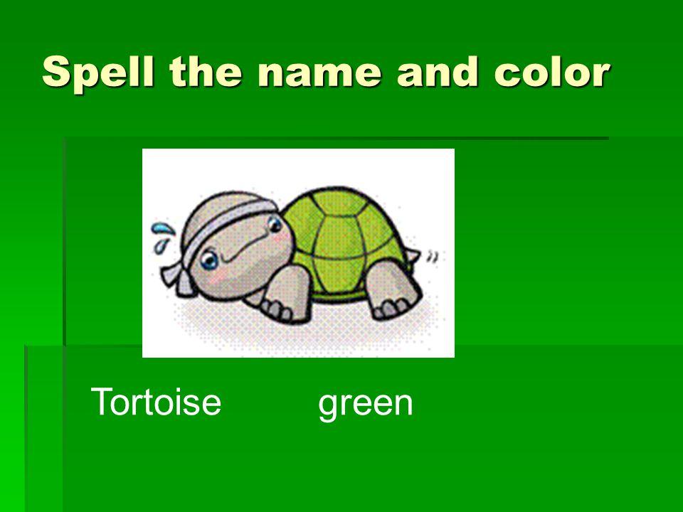 Tortoise green