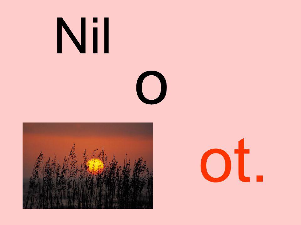 Nil o ne