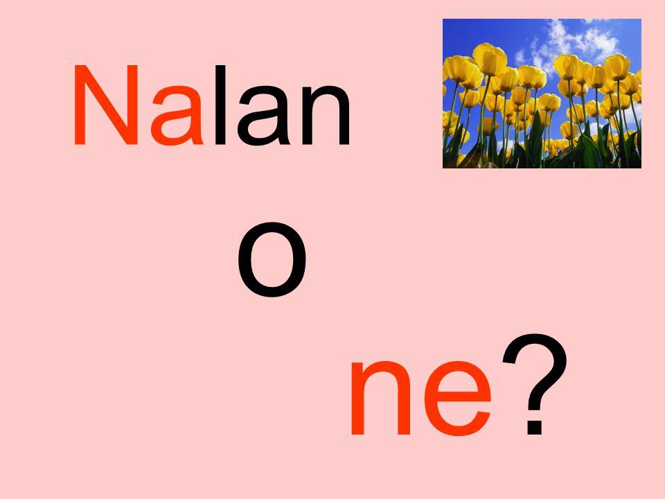 Na Nalan