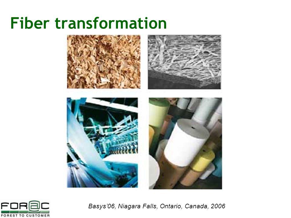 Basys'06, Niagara Falls, Ontario, Canada, 2006 Fiber transformation