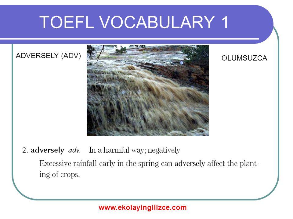www.ekolayingilizce.com TOEFL VOCABULARY 1 AGGREGATE (ADJ) TOPLAM