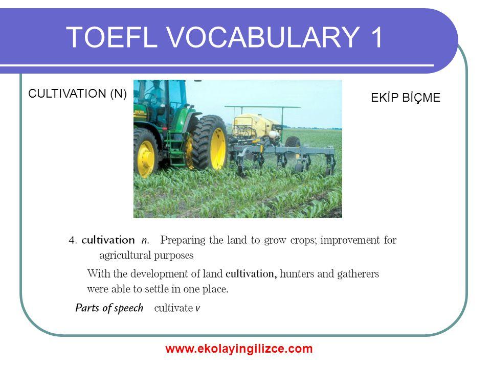 www.ekolayingilizce.com TOEFL VOCABULARY 1 CULTIVATION (N) EKİP BİÇME