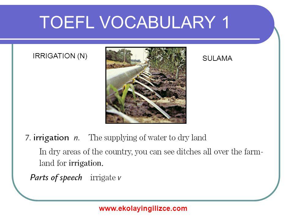 www.ekolayingilizce.com TOEFL VOCABULARY 1 OBTAIN (V) ELDE ETMEK