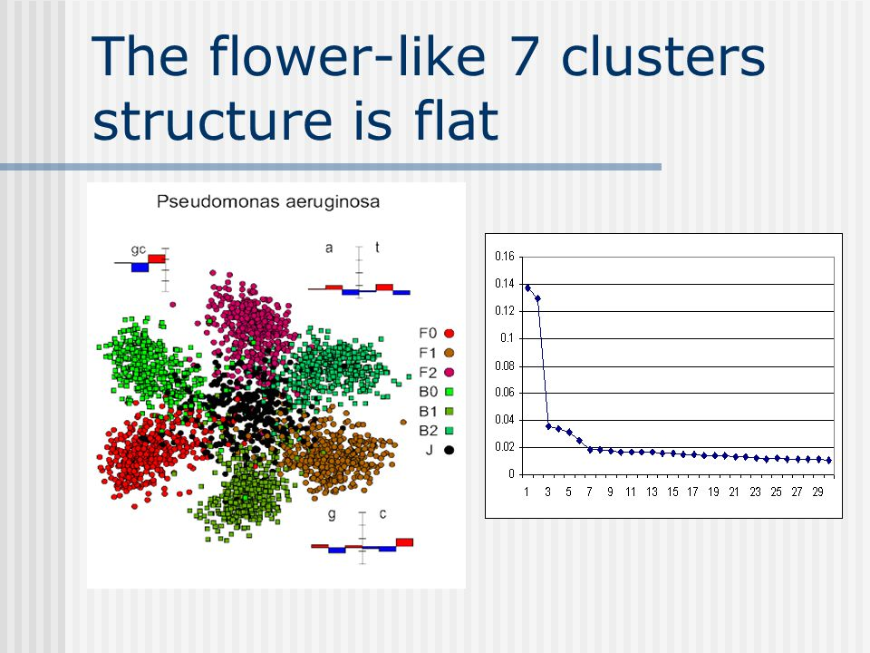 The flower-like 7 clusters structure is flat