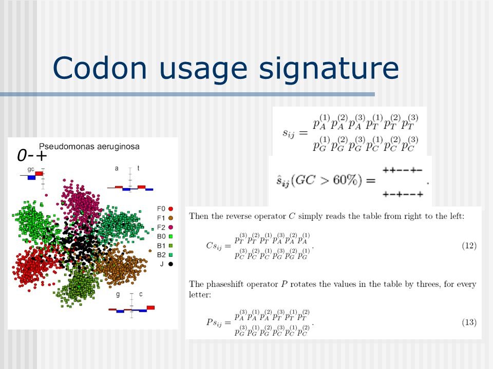 Codon usage signature 0-+