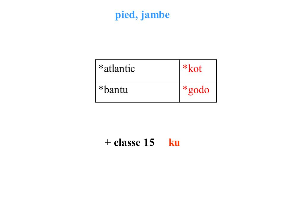 pied, jambe + classe 15 ku *atlantic*kot *bantu*godo