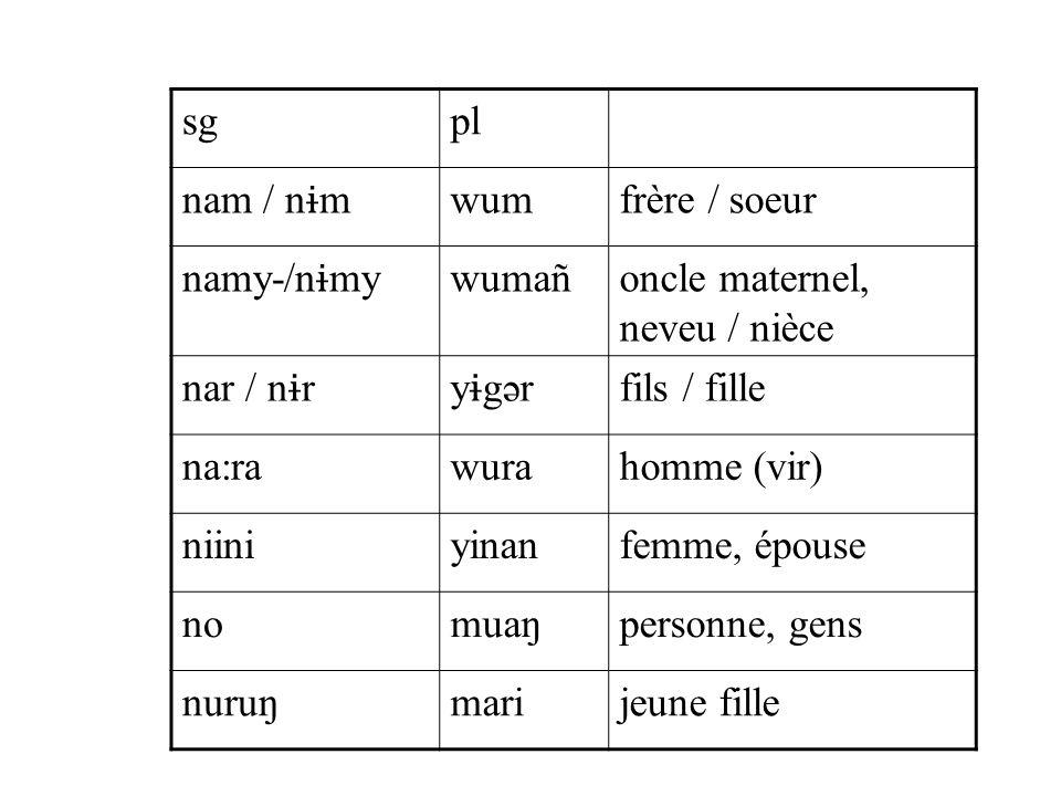 sgpl nam / n ɨ m wumfrère / soeur namy-/n ɨ my wumañoncle maternel, neveu / nièce nar / n ɨ ry ɨ gər fils / fille na:rawurahomme (vir) niiniyinanfemme