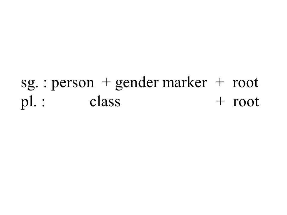 sg. : person + gender marker + root pl. : class + root