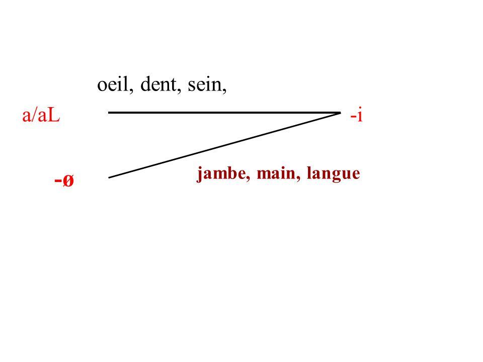 oeil, dent, sein, a/aL -i -ø jambe, main, langue