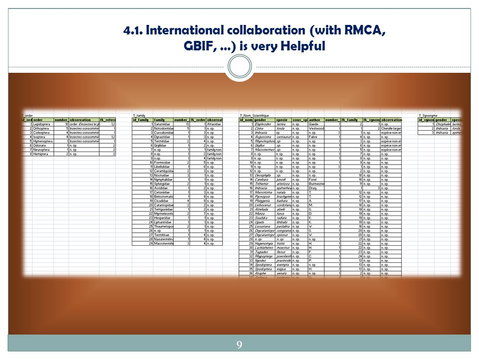 4.1. International collaboration (with RMCA, GBIF, …) is very Helpful 9