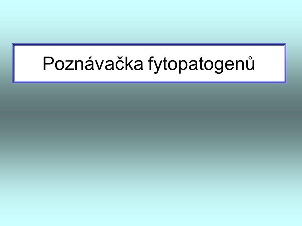Poznávačka fytopatogenů