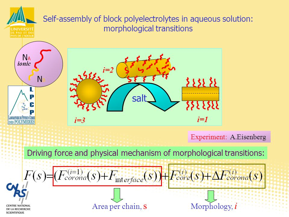 Experiment: A.Eisenberg Self-assembly of block polyelectrolytes in aqueous solution: morphological transitions Area per chain, s Morphology, i Driving force and physical mechanism of morphological transitions: NANA NBNB ionic salt i=3 i=2 i=1