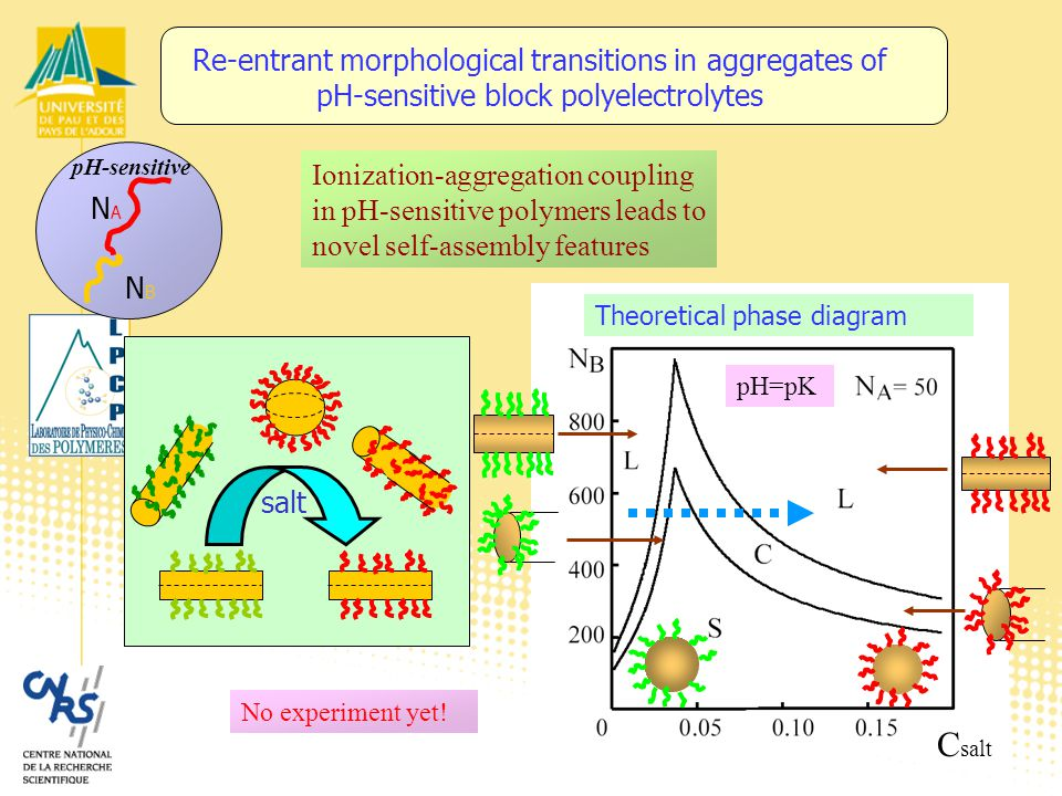 C salt pH=pK Re-entrant morphological transitions in aggregates of pH-sensitive block polyelectrolytes No experiment yet.