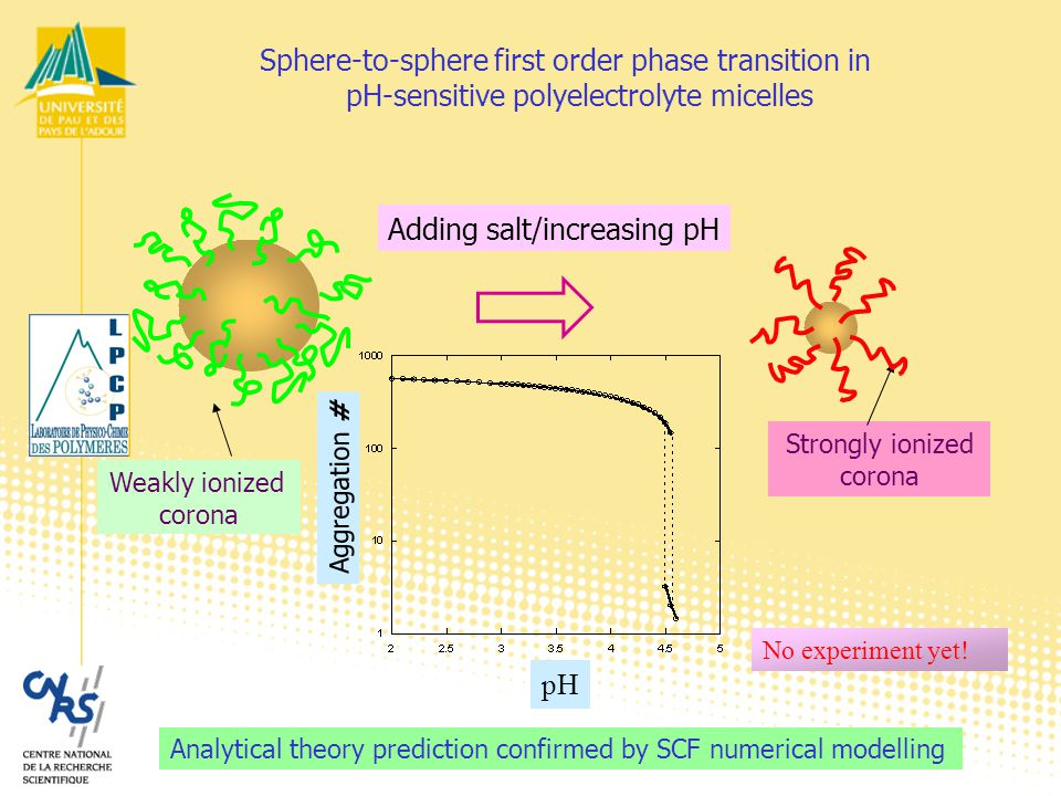 Analytical theory prediction confirmed by SCF numerical modelling Sphere-to-sphere first order phase transition in pH-sensitive polyelectrolyte micelles No experiment yet.